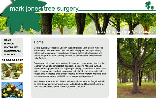 Mark Jones Tree Surgery in Eastry, Kent